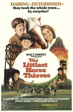 Best Family Movies of 1976 : The Littlest Horse Thieves