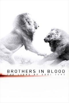 Best Documentary Movies of 2015 : Brothers in Blood: The Lions of Sabi Sand