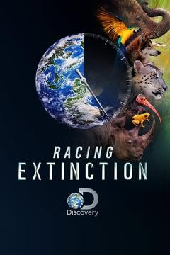 Best Documentary Movies of 2015 : Racing Extinction
