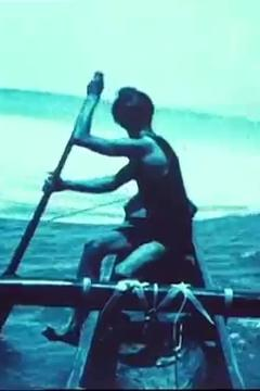 Best Documentary Movies of 1916 : Hawaii: The Paradise of the Pacific