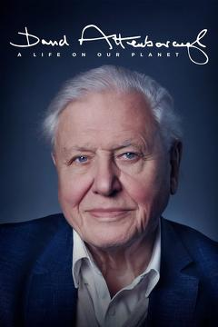 Best Documentary Movies of 2020 : David Attenborough: A Life on Our Planet