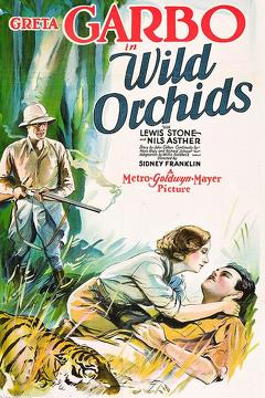Best Romance Movies of 1929 : Wild Orchids