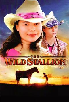 Best Western Movies of 2009 : The Wild Stallion