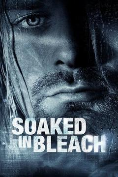 Best Music Movies of 2015 : Soaked in Bleach