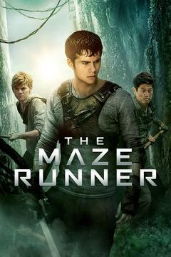 Best Mystery Movies of 2014 : The Maze Runner