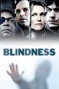 Best Mystery Movies of 2008 : Blindness