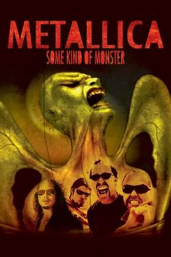 Best Music Movies of 2004 : Metallica: Some Kind of Monster
