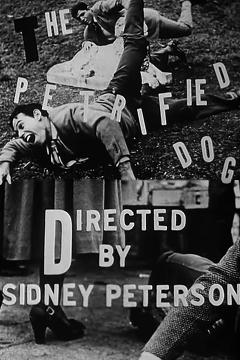 Best Fantasy Movies of 1949 : The Petrified Dog