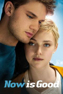 Best Romance Movies of 2012 : Now Is Good