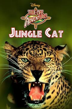Best Family Movies of 1959 : Jungle Cat