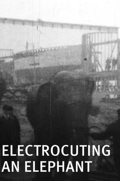 Best Documentary Movies of 1903 : Electrocuting an Elephant