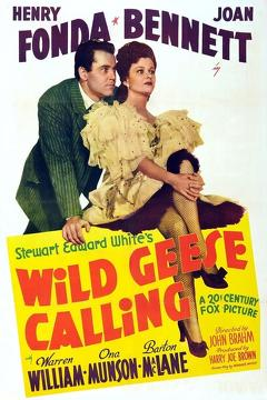 Best Drama Movies of 1941 : Wild Geese Calling