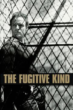Best Drama Movies of 1960 : The Fugitive Kind