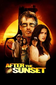Best Crime Movies of 2004 : After the Sunset