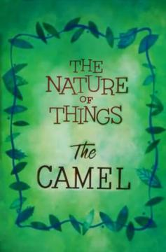 Best Animation Movies of 1956 : The Nature of Things: The Camel