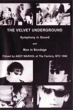 Best Documentary Movies of 1966 : The Velvet Underground and Nico