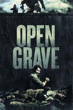 Best Mystery Movies of 2013 : Open Grave