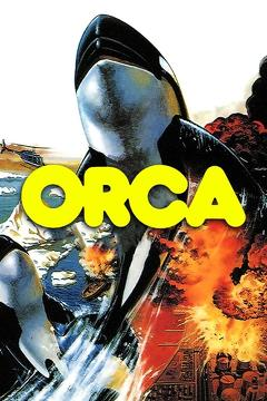 Best Adventure Movies of 1977 : Orca