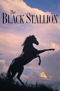 Best Family Movies of 1979 : The Black Stallion