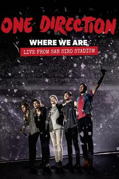 Best Music Movies of 2014 : One Direction: Where We Are – The Concert Film