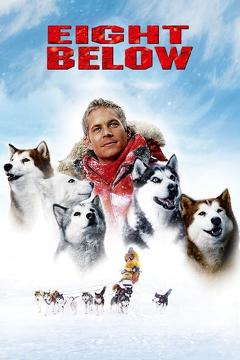 Best Adventure Movies of 2006 : Eight Below