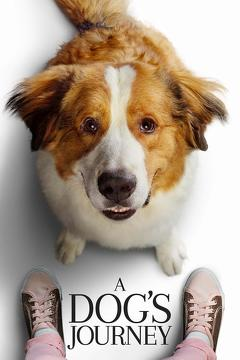 Best Fantasy Movies of 2019 : A Dog's Journey