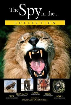 Best Documentary Movies of 2000 : Lions: Spy in the Den
