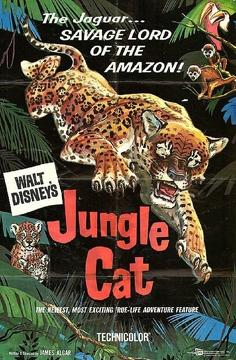 Best Documentary Movies of 1959 : Jungle Cat