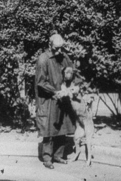 Best Documentary Movies of 1930 : Experimental Treatment of a Hemorrhage in a Dog