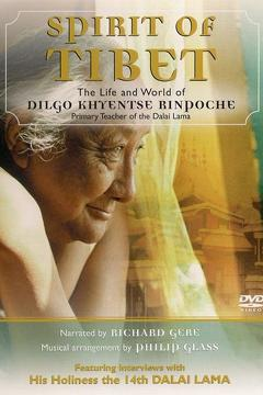 Best Documentary Movies of 1995 : Spirit of Tibet: Journey to Enlightenment, the Life and World of Dilgo Kyentse Rinpoche