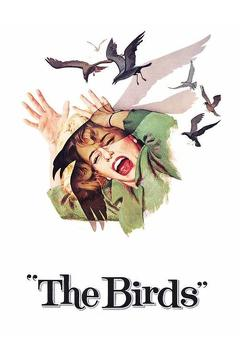 Best Horror Movies of 1963 : The Birds