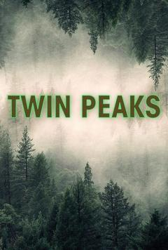 Best Mystery Movies of 1990 : Twin Peaks (S1 & S2)