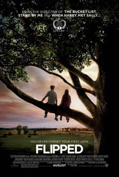 Best Romance Movies of 2010 : Flipped