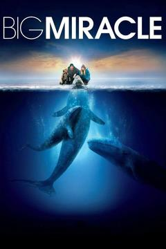 Best Romance Movies of 2012 : Big Miracle
