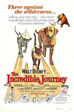 Best Adventure Movies of 1963 : The Incredible Journey